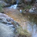 Reflective creek