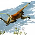 Proboscic leap