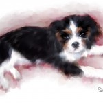 Baby Spencer03 watercolor