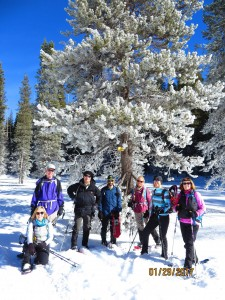 Yosemite snowshoe group